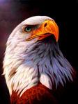 Алмазная мозаика грозный орел 30x40