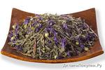 Зеленый чай с добаквами Комбуча чайный гриб