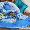 Одеяло верблюжья шерсть в полиэстере 300 гр. ОПЭВШ 1,5 спальное