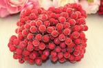 """Ягода красная """"в сахаре"""", 10мм, одна связка 400 ягод. E140/70"""