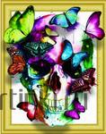 Алмазная вышивка «череп и разноцветные бабочки»