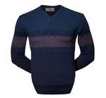Стильный пуловер (1551)