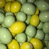 Шоколадное драже с арахисом в цветной глазури (миньоны), 1 кг