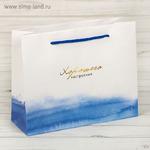 Пакет подарочный «Гармонии», 22 x 17,5 x 8 см