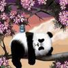 """РН GX25499 """"Панда спит на ветке"""", 40х50 см"""
