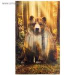 Полотенце «Этель: Лес», 40 x 67 см, хлопок 100 %, саржа, 190 г/м^2