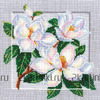 Вышивка крестом «с-19 символы. красота»
