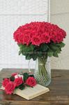Роза малая красная