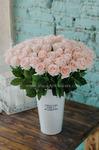 Роза полузакрытая