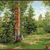 Набор для вышивания ПАЛИТРА арт.08.006 Лесная тропинка 34х27 см