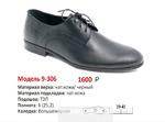 Ботинки мужские 8-306(демисезон)