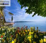 Алмазная вышивка «тюльпаны и море»