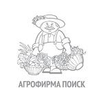 Баклажан Черный красавец (ЧБ)