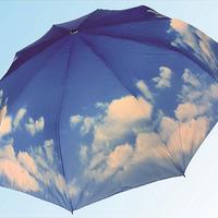 Зонт 1009 небо