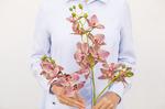 Орхидея 3 стебля 3D