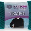 Tempo Kartopu