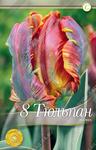 Тюльпан попугайный Блюмекс, 8 луковиц