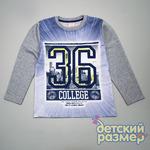 ФУТБОЛКА-ЛОНГСЛИВ арт.57128