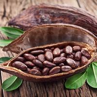 Какао бобы Премиум, весовое
