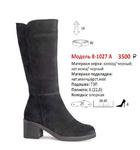 Сапоги женские 8-1027 А(зима)