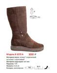 Сапоги женские 8-1079 А(зима)