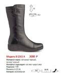 Сапоги женские 8-1065 А(зима)