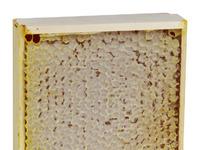 Мед в сотах горный мини рамка