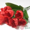 БЭСЛОУ Букет тюльпанов 9 голов (50)