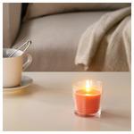 СИНЛИГ Ароматическая свеча в стакане, Красные садовые ягоды, красный, 7.5 см