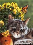 GX8715 Довольный кот картина по номерам 40х50