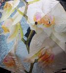 Зонт женский (полуавтомат) №5126 Орхидеи