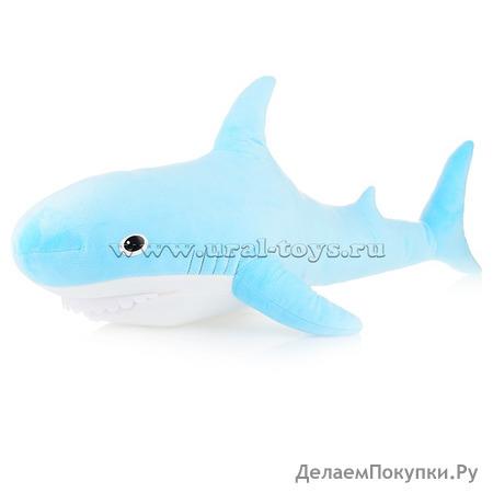 Акула голубая (Большая)
