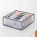 Прозрачный органайзер для хранения бюстгалтеров (6 ячеек)