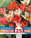 Тюльпан Ботаникал Микс (25 лук.)