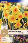Нарцисс Голден Даун (5 лук.)