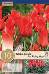 Тюльпан Ред Ридинг Худ (10 лук.)