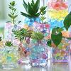 Гидрогель для декора и домашних растений