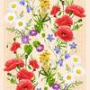 5418-1 Вафельная ткань «Полевые цветы»