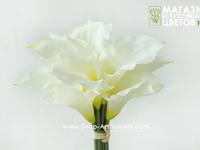Калла букет, 11 шт. арт 022
